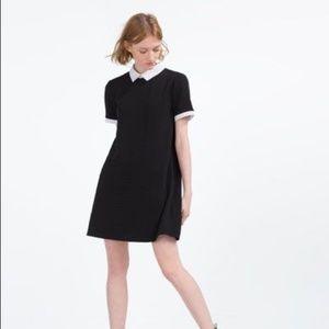 Zara poplin collar shift dress